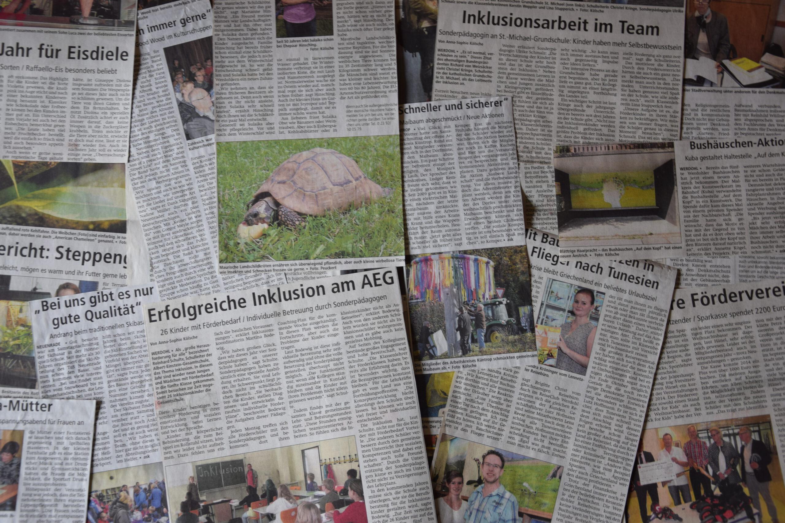 Eine Ode an den Lokaljournalismus – ein Erfahrungsbericht